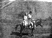 Бухтарминские старообрядцы. Поездка на пашню с косой