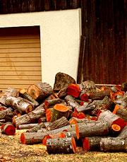 Оранжевые дрова