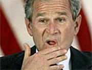 Популярность Буша упала до предельно низкого уровня