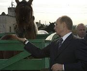 Это ещё называется 'тёмной лошадкой'