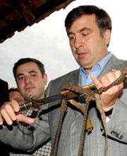 Саакашвили хочет драки